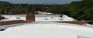 Rosie on the House Foam Roof