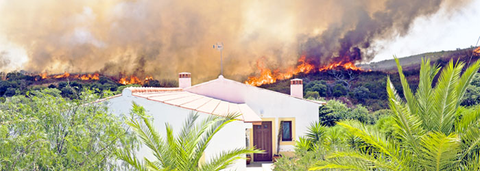 Can You Build an Arizona House to Survive a Wildfire?