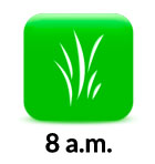 8am grass icon 2