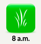 8am grass icon